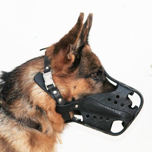 Museliere de dressage chien en cuir «Agitation» - M56