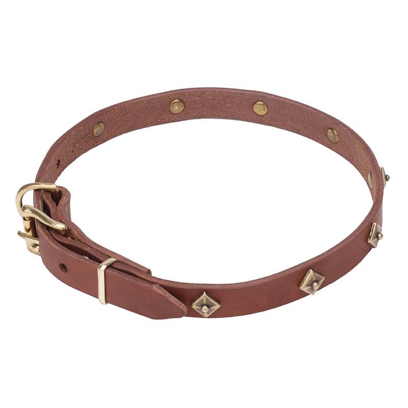 collier de chien de marque 171losanges187 c80