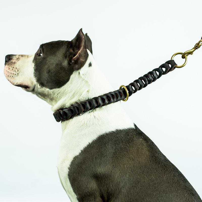 Collier de dressage pour chien américan staff «Tresse